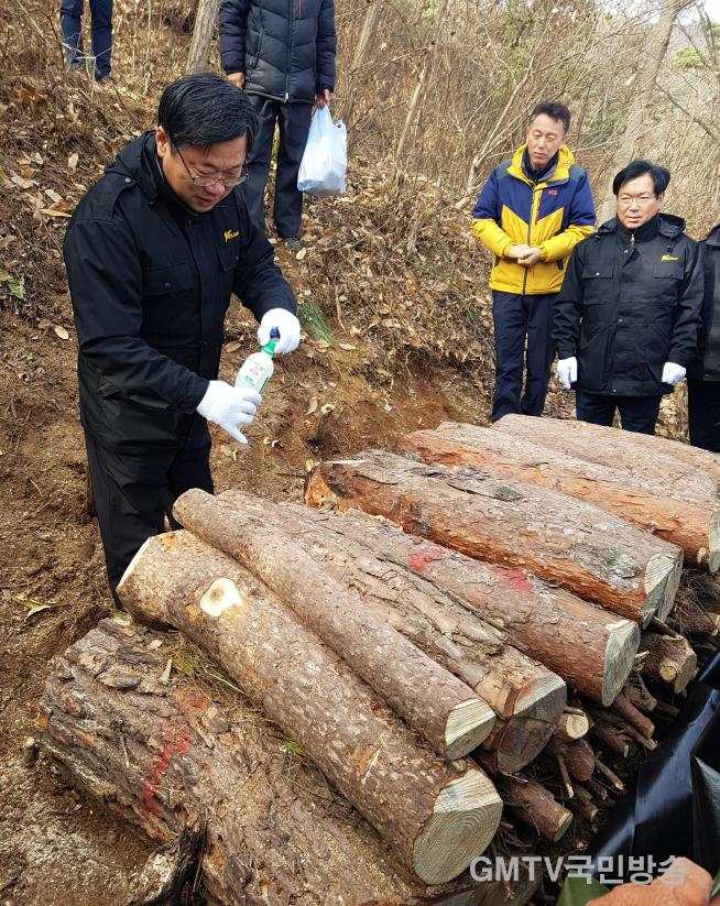 [산림과]이묵 부시장 소나무재선충병 방제 항공예찰 및 현장방문3.png